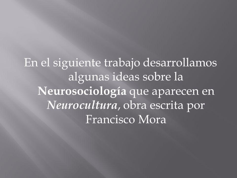 -> El término neurosociología fue acuñado por primera vez por Warren D.