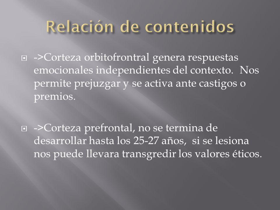->Corteza orbitofrontral genera respuestas emocionales independientes del contexto.