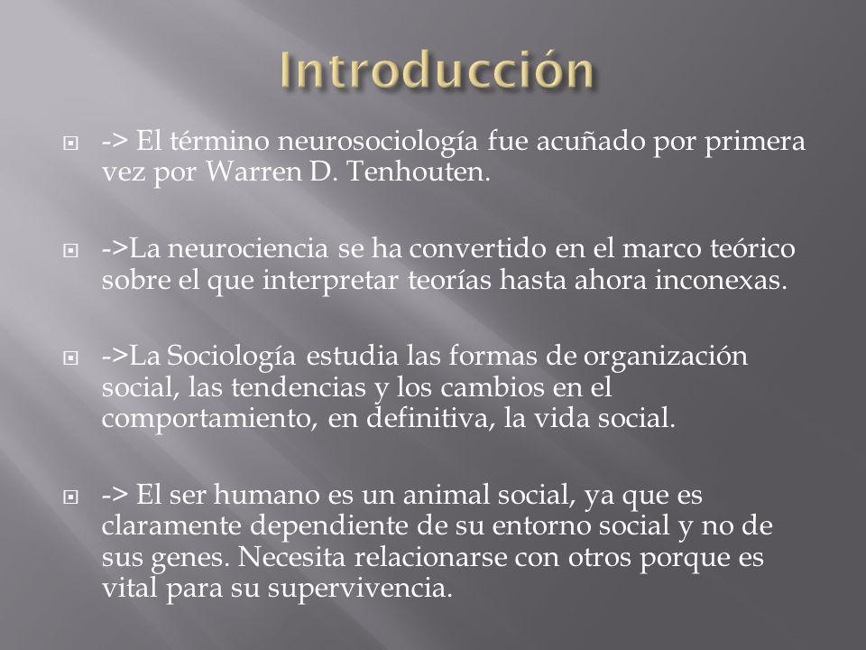 -> Es la ciencia que se encarga de estudiar y entender como funciona nuestro cerebro, en función de nuestras interacciones.