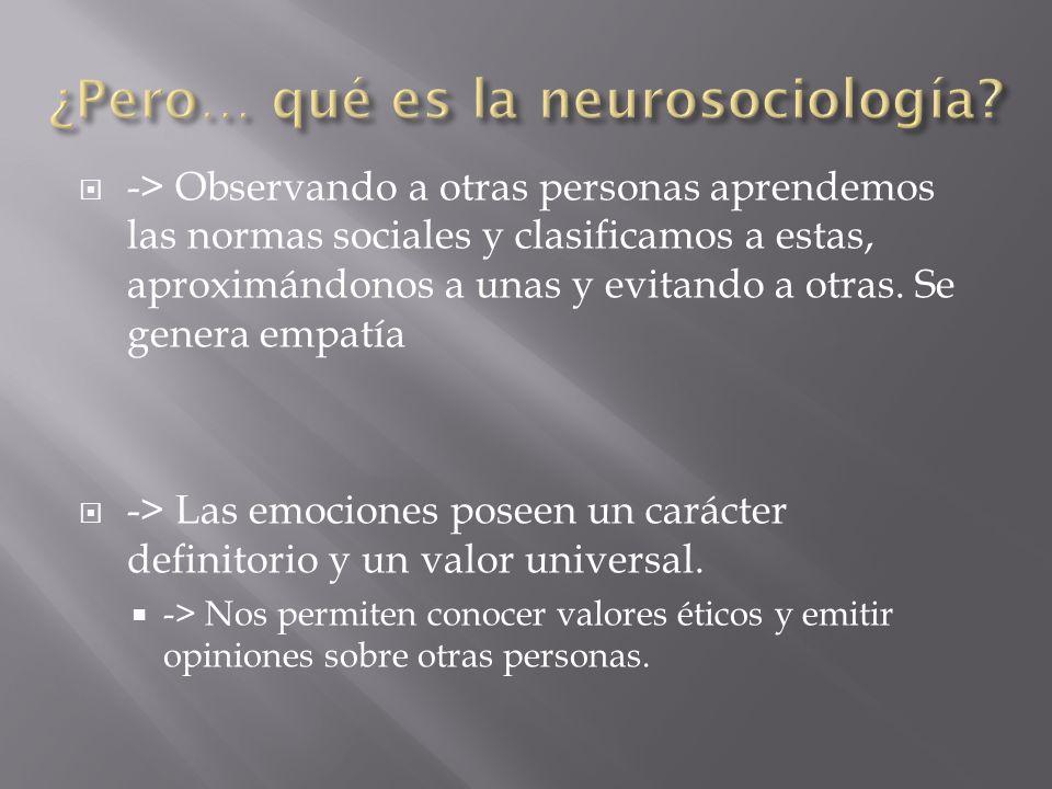 -> Las neuronas de la corteza prefrontal se activan con determinadas conductas ->La corteza orbitofrontal se activa ante situaciones de premios o castigos.