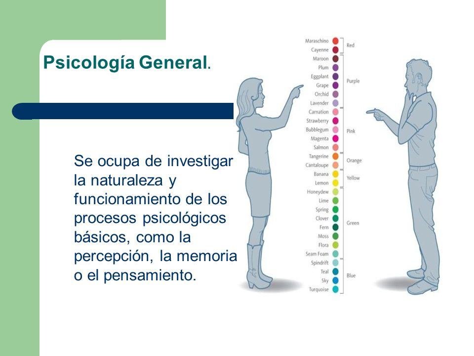Psicología General. Se ocupa de investigar la naturaleza y funcionamiento de los procesos psicológicos básicos, como la percepción, la memoria o el pe