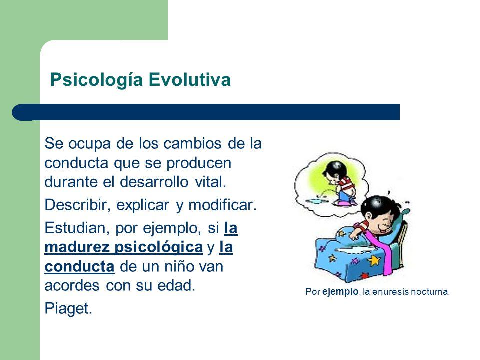 Psicología Evolutiva Se ocupa de los cambios de la conducta que se producen durante el desarrollo vital. Describir, explicar y modificar. Estudian, po