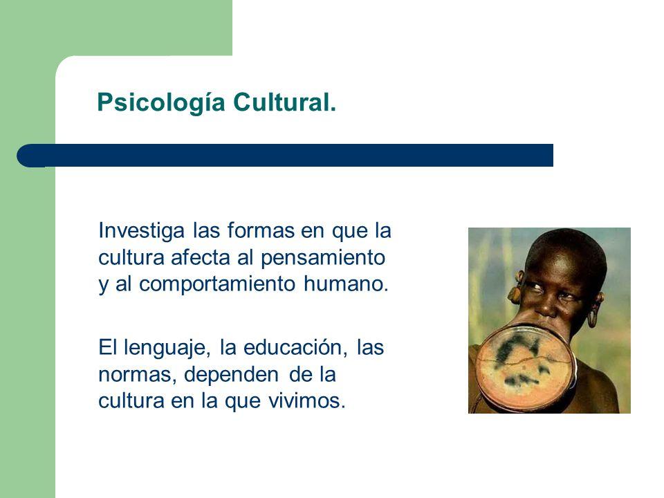 Psicología Cultural. Investiga las formas en que la cultura afecta al pensamiento y al comportamiento humano. El lenguaje, la educación, las normas, d