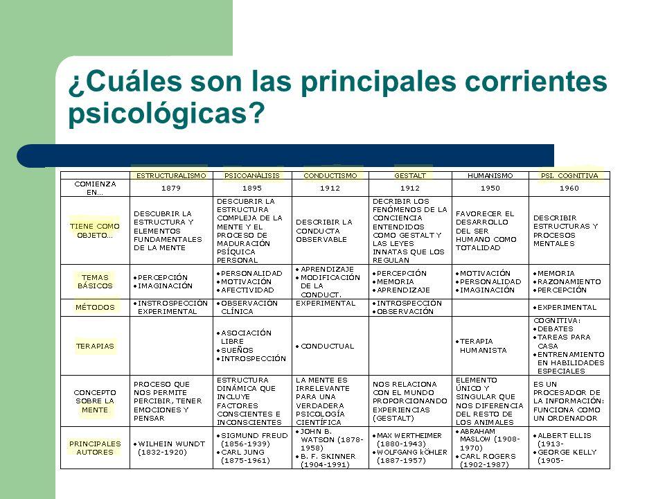 ¿A qué se dedican los psicólogos.Hay dos grandes ramas: – La psicología animal o etología.