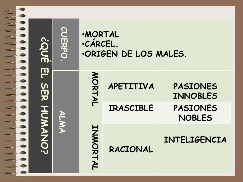 ¿QUÉ EL SER HUMANO? CUERPO. MORTAL CÁRCEL. ORIGEN DE LOS MALES. ALMA MORTAL APETITIVAPASIONES INNOBLES IRASCIBLEPASIONES NOBLES INMORTAL RACIONAL INTE