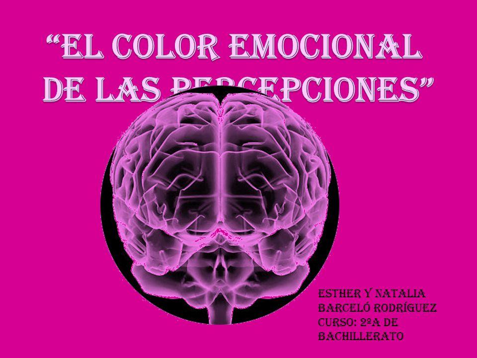 Corteza Cingular Las emociones y percepciones pueden ser provocadas desde el interior del cerebro (sueños o recuerdos que no precisan sensaciones externas.