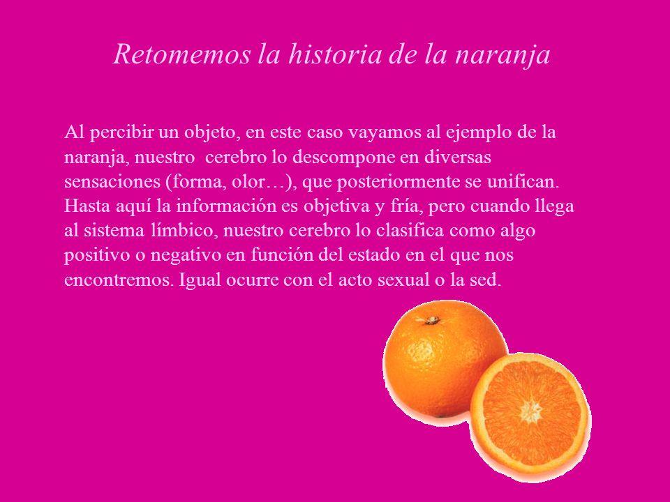 Retomemos la historia de la naranja Al percibir un objeto, en este caso vayamos al ejemplo de la naranja, nuestro cerebro lo descompone en diversas se