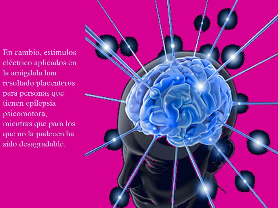 En cambio, estímulos eléctrico aplicados en la amígdala han resultado placenteros para personas que tienen epilepsia psicomotora, mientras que para lo