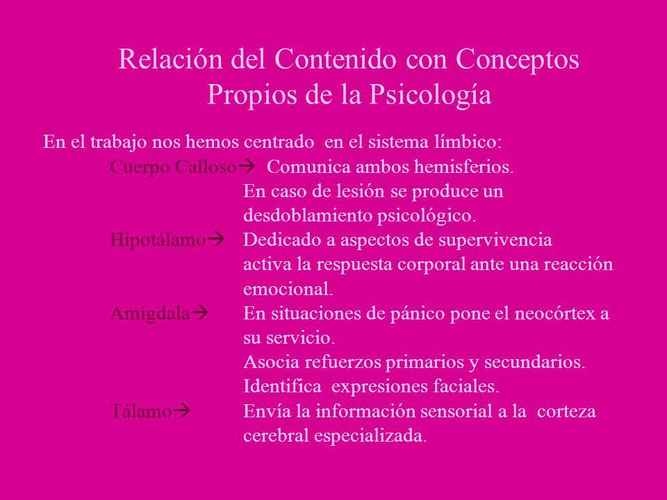 Relación del Contenido con Conceptos Propios de la Psicología En el trabajo nos hemos centrado en el sistema límbico: Cuerpo Calloso Comunica ambos he