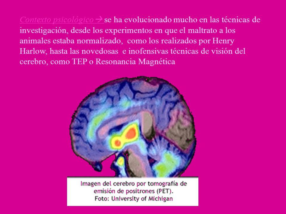 En cambio, estímulos eléctrico aplicados en la amígdala han resultado placenteros para personas que tienen epilepsia psicomotora, mientras que para los que no la padecen ha sido desagradable.