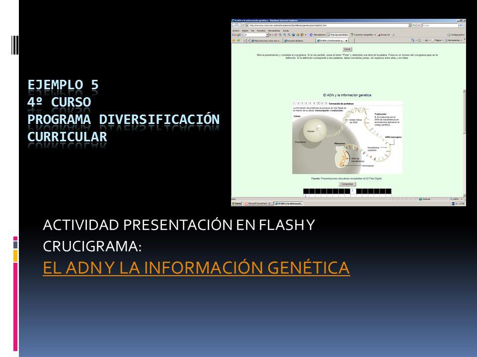 ACTIVIDAD PRESENTACIÓN EN FLASH Y CRUCIGRAMA: EL ADN Y LA INFORMACIÓN GENÉTICA