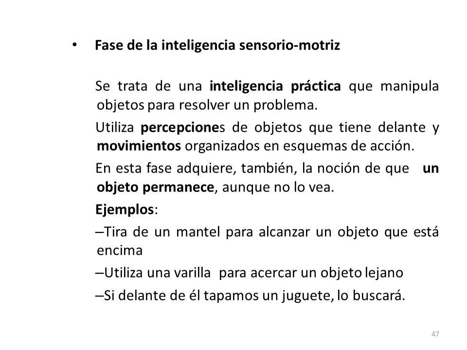 Fase de la inteligencia sensorio-motriz (6 meses- 2 años) Se trata de una inteligencia práctica que manipula objetos para resolver un problema. Utiliz