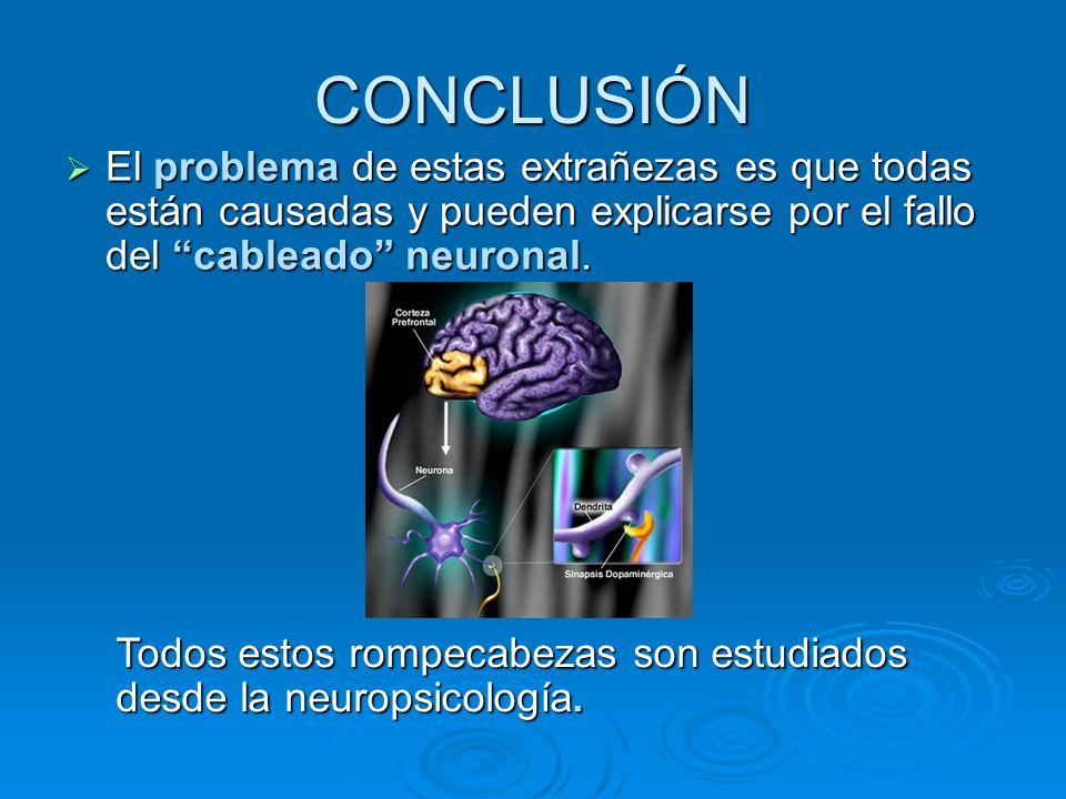 El problema de estas extrañezas es que todas están causadas y pueden explicarse por el fallo del cableado neuronal. El problema de estas extrañezas es