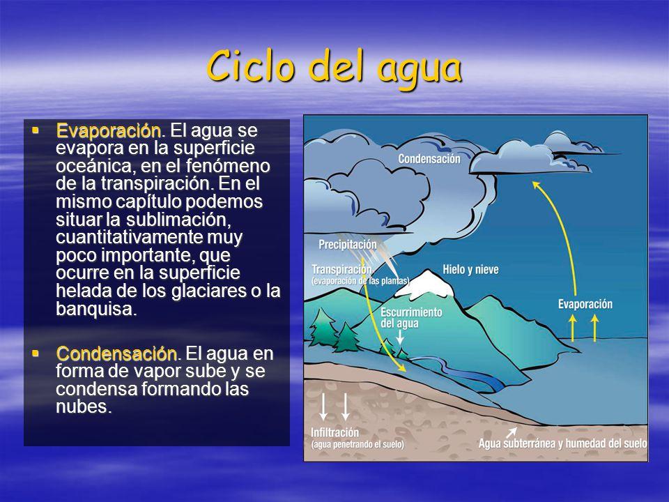 Ciclo del agua Evaporación. El agua se evapora en la superficie oceánica, en el fenómeno de la transpiración. En el mismo capítulo podemos situar la s