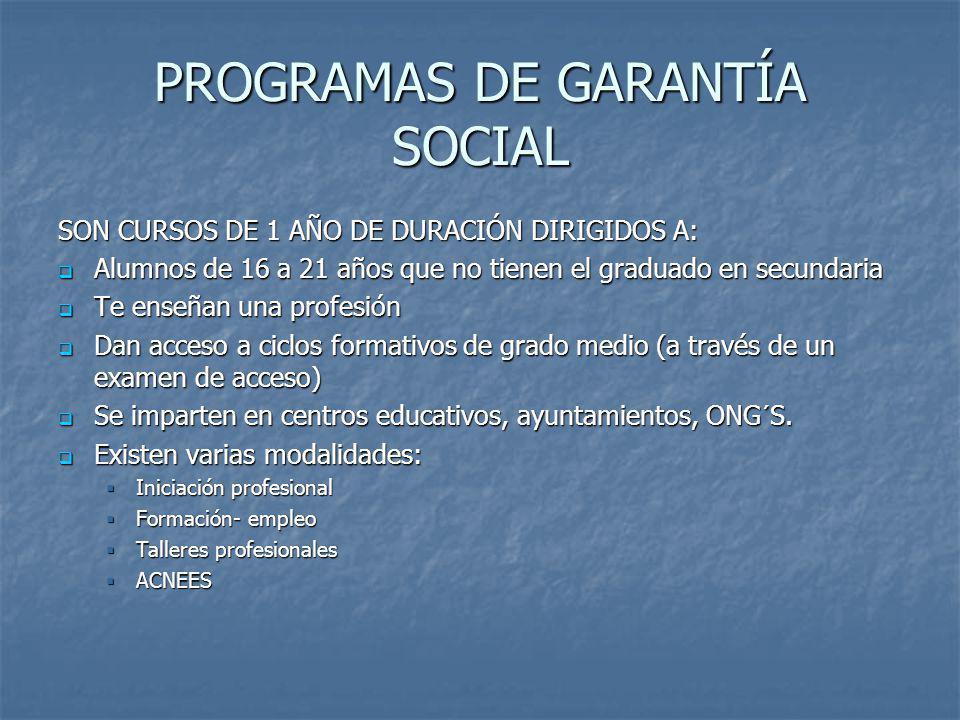 PROGRAMAS DE GARANTÍA SOCIAL SON CURSOS DE 1 AÑO DE DURACIÓN DIRIGIDOS A: Alumnos de 16 a 21 años que no tienen el graduado en secundaria Alumnos de 1