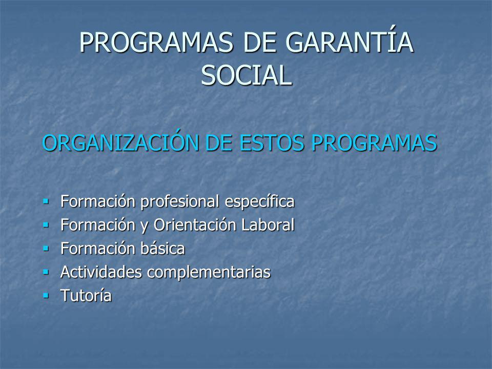 PROGRAMAS DE GARANTÍA SOCIAL ORGANIZACIÓN DE ESTOS PROGRAMAS Formación profesional específica Formación profesional específica Formación y Orientación