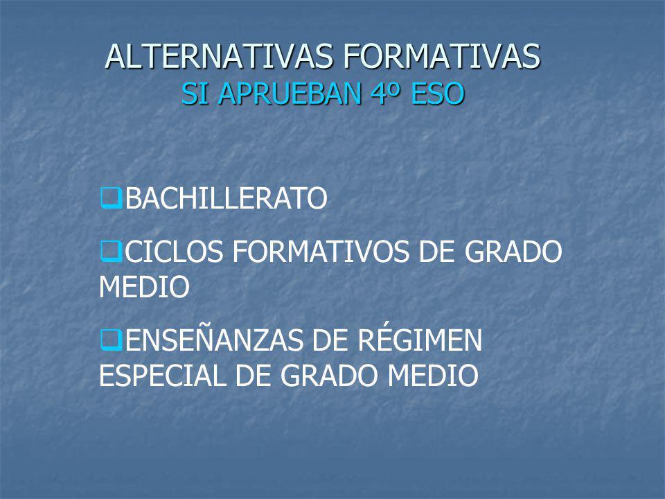 ALTERNATIVAS FORMATIVAS SI APRUEBAN 4º ESO BACHILLERATO CICLOS FORMATIVOS DE GRADO MEDIO ENSEÑANZAS DE RÉGIMEN ESPECIAL DE GRADO MEDIO