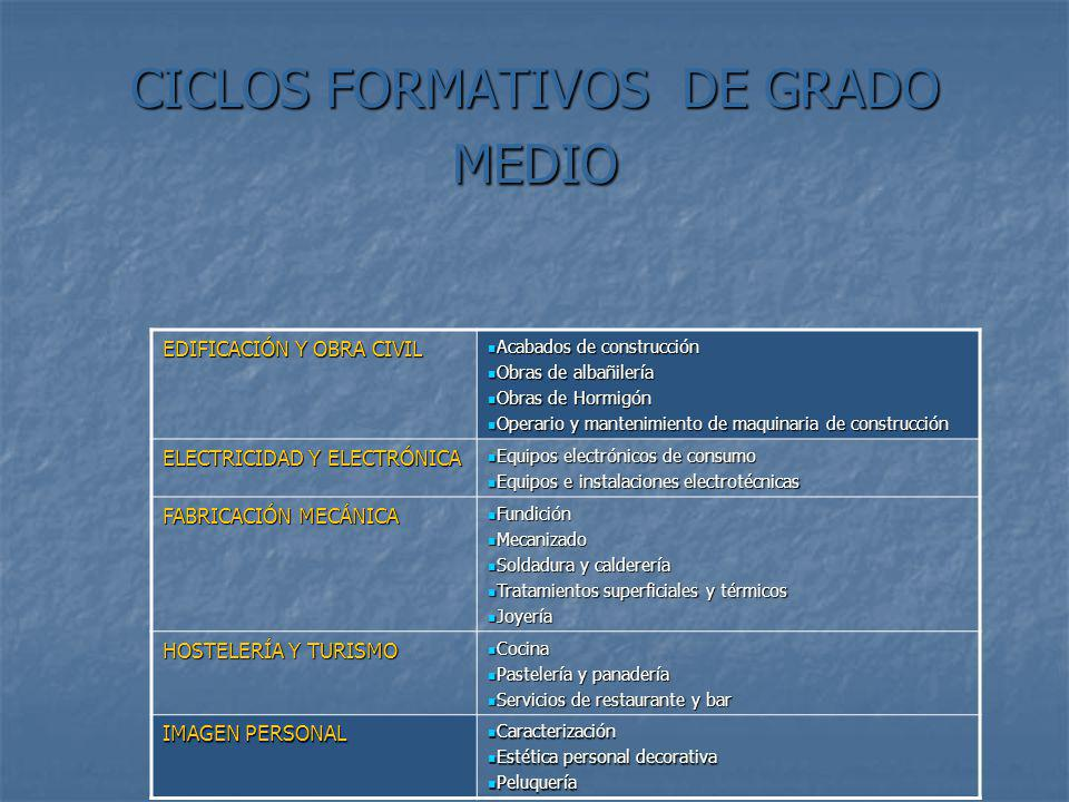 Algunos enlaces interesantes http://www.educa.madrid.org/portal/web/diversidad/ http: //www.fue.es http: //www.fue.es www.educaweb.com/esp/servicios/monografico/orientacionprofesional2007 / www.educaweb.com/esp/servicios/monografico/orientacionprofesional2007 / www.educa.madrid.org/web/crif.acacias/orientacion/informacion/ www.educa.madrid.org/web/crif.acacias/orientacion/informacion/