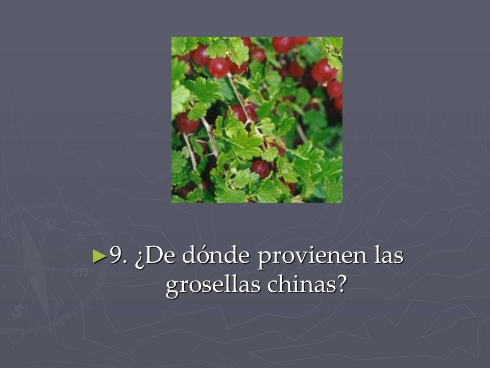 9. ¿De dónde provienen las grosellas chinas? 9. ¿De dónde provienen las grosellas chinas?