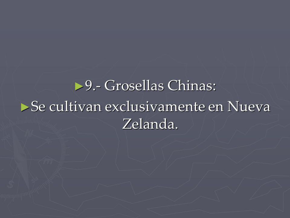 9.- Grosellas Chinas: 9.- Grosellas Chinas: Se cultivan exclusivamente en Nueva Zelanda. Se cultivan exclusivamente en Nueva Zelanda.