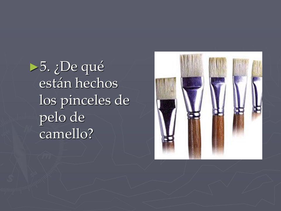 5. ¿De qué están hechos los pinceles de pelo de camello? 5. ¿De qué están hechos los pinceles de pelo de camello?