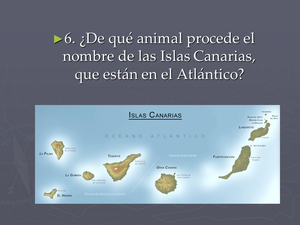 6. ¿De qué animal procede el nombre de las Islas Canarias, que están en el Atlántico? 6. ¿De qué animal procede el nombre de las Islas Canarias, que e