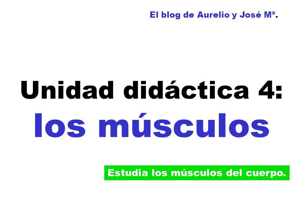 Unidad didáctica 4: los músculos El blog de Aurelio y José Mª. Estudia los músculos del cuerpo.