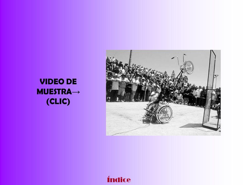 VIDEO DE MUESTRA (CLIC) Índice