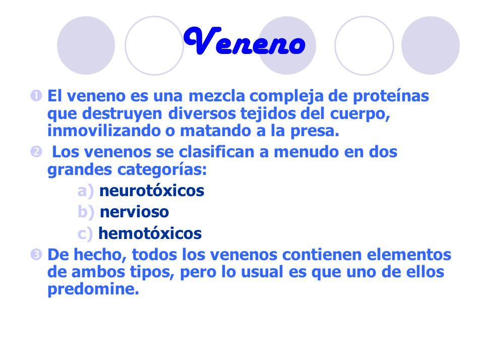 Veneno El veneno es una mezcla compleja de proteínas que destruyen diversos tejidos del cuerpo, inmovilizando o matando a la presa. Los venenos se cla