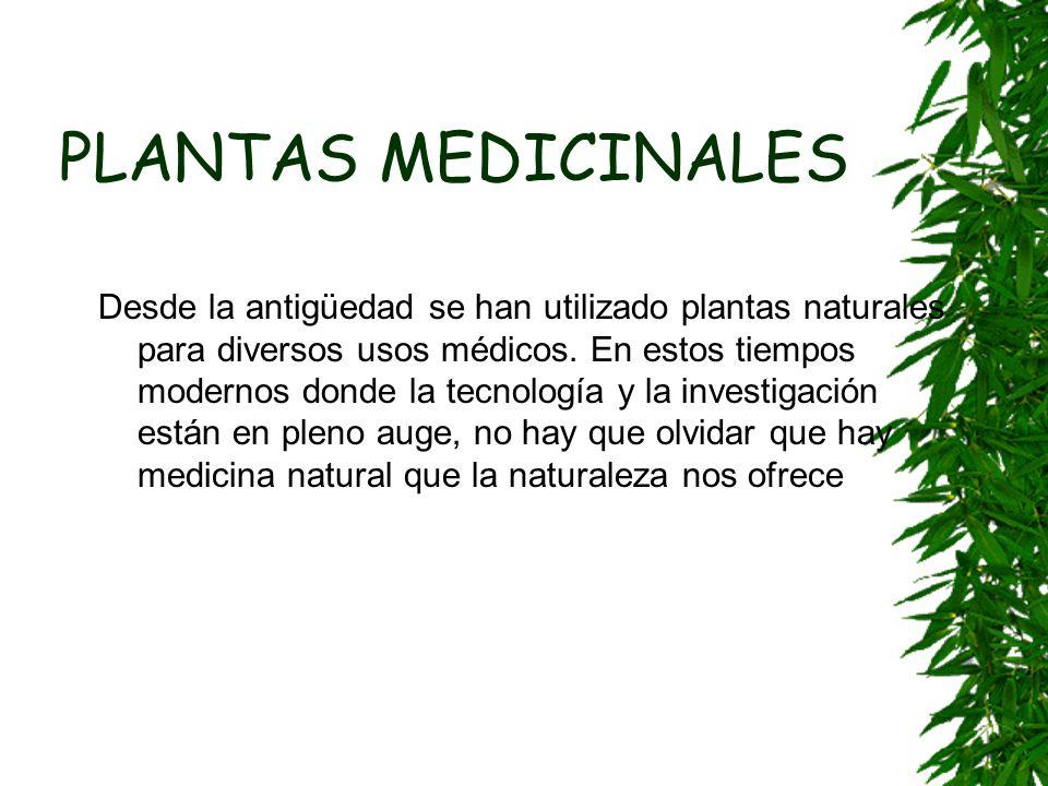 PLANTAS MEDICINALES Desde la antigüedad se han utilizado plantas naturales para diversos usos médicos. En estos tiempos modernos donde la tecnología y