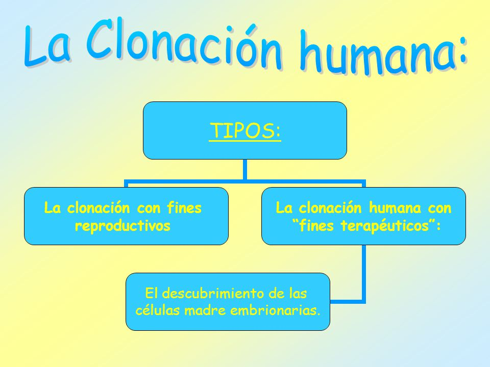 TIPOS: La clonación con fines reproductivos La clonación humana con fines terapéuticos: El descubrimiento de las células madre embrionarias.