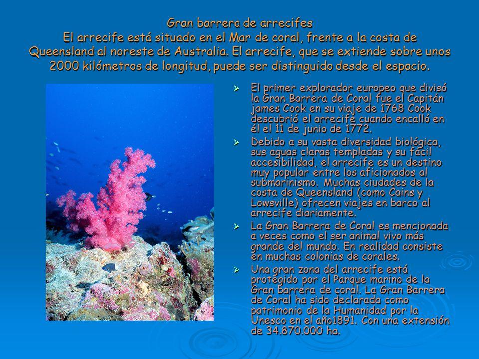 Gran barrera de arrecifes El arrecife está situado en el Mar de coral, frente a la costa de Queensland al noreste de Australia. El arrecife, que se ex