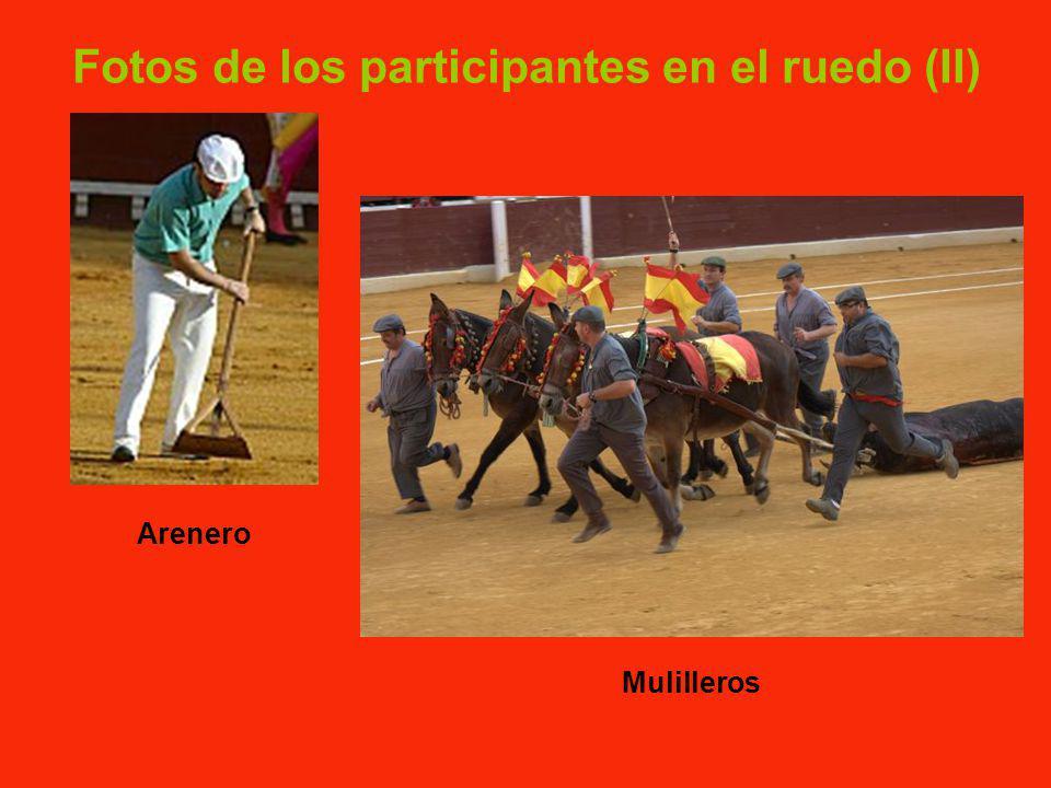 Fotos de los participantes en el ruedo (I) Mozo de espadas Banderillero Picador