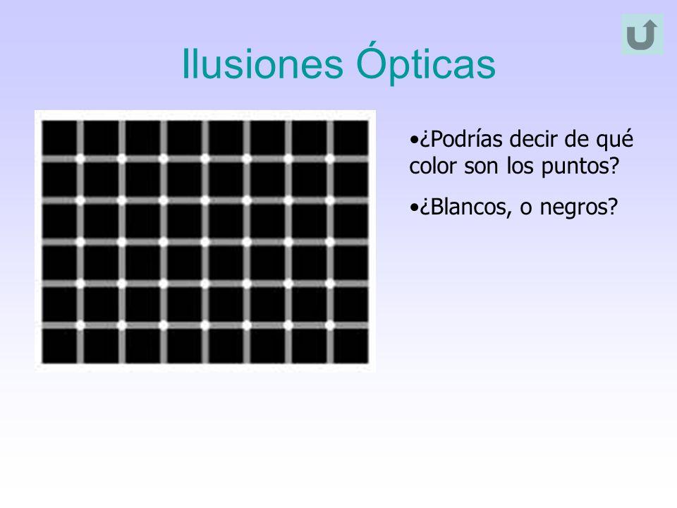 Ilusiones Ópticas ¿Podrías decir de qué color son los puntos? ¿Blancos, o negros?
