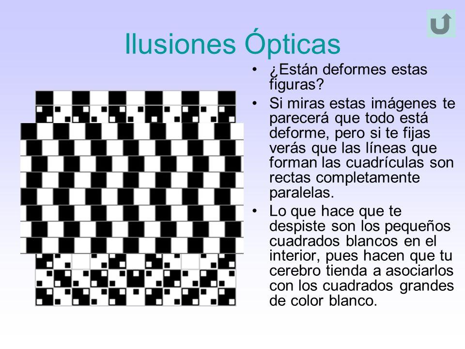Ilusiones Ópticas ¿Están deformes estas figuras? Si miras estas imágenes te parecerá que todo está deforme, pero si te fijas verás que las líneas que