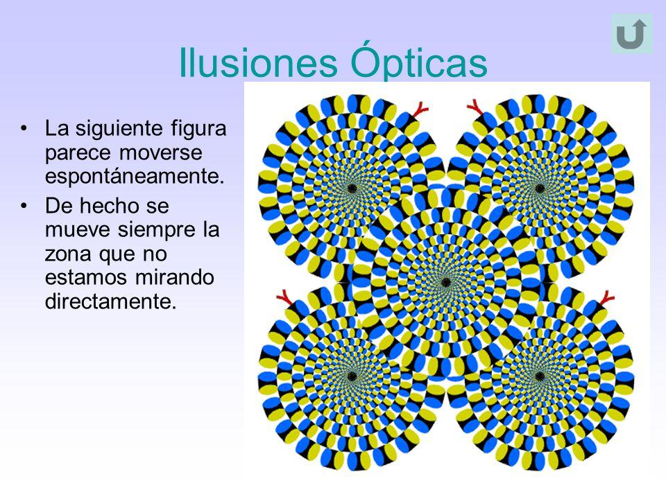 Ilusiones Ópticas La siguiente figura parece moverse espontáneamente. De hecho se mueve siempre la zona que no estamos mirando directamente.