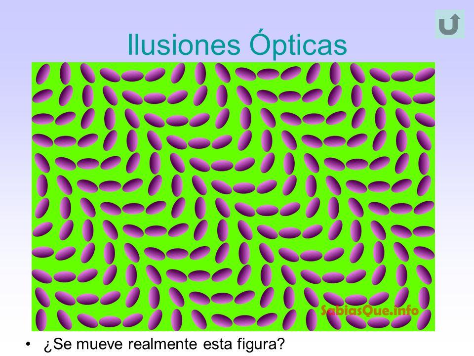 Ilusiones Ópticas ¿Se mueve realmente esta figura?