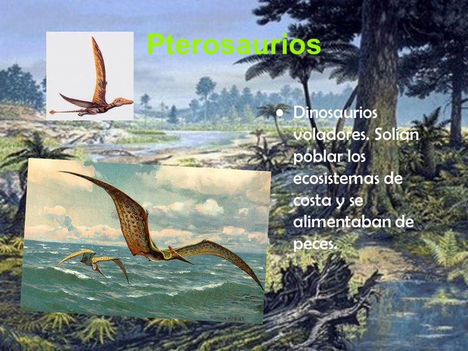 Pterosaurios Dinosaurios voladores. Solían poblar los ecosistemas de costa y se alimentaban de peces.