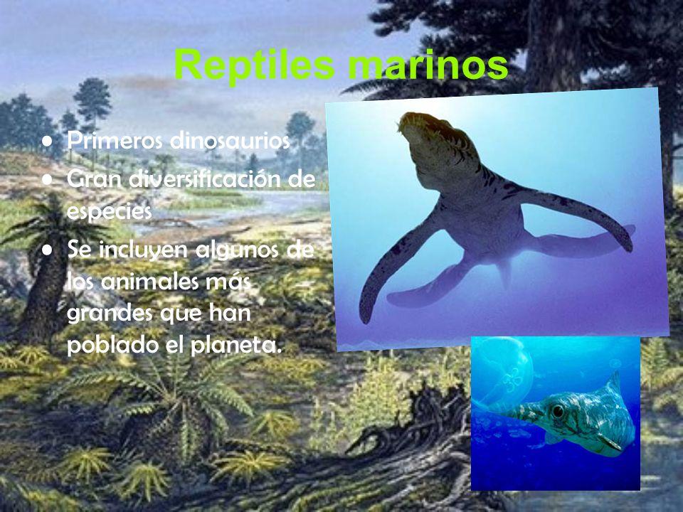 Reptiles marinos Primeros dinosaurios Gran diversificación de especies Se incluyen algunos de los animales más grandes que han poblado el planeta.