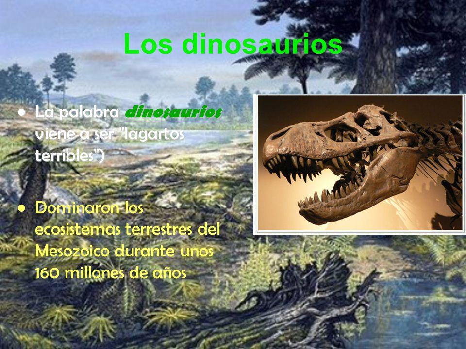Los dinosaurios La palabra dinosaurios viene a ser