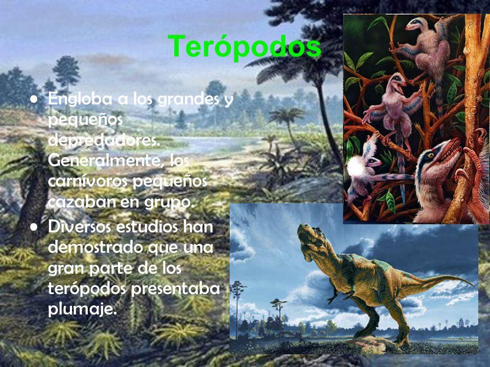 Terópodos Engloba a los grandes y pequeños depredadores. Generalmente, los carnívoros pequeños cazaban en grupo. Diversos estudios han demostrado que