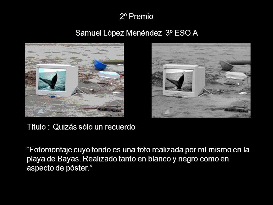 2º Premio Samuel López Menéndez 3º ESO A Título : Quizás sólo un recuerdo Fotomontaje cuyo fondo es una foto realizada por mí mismo en la playa de Bay