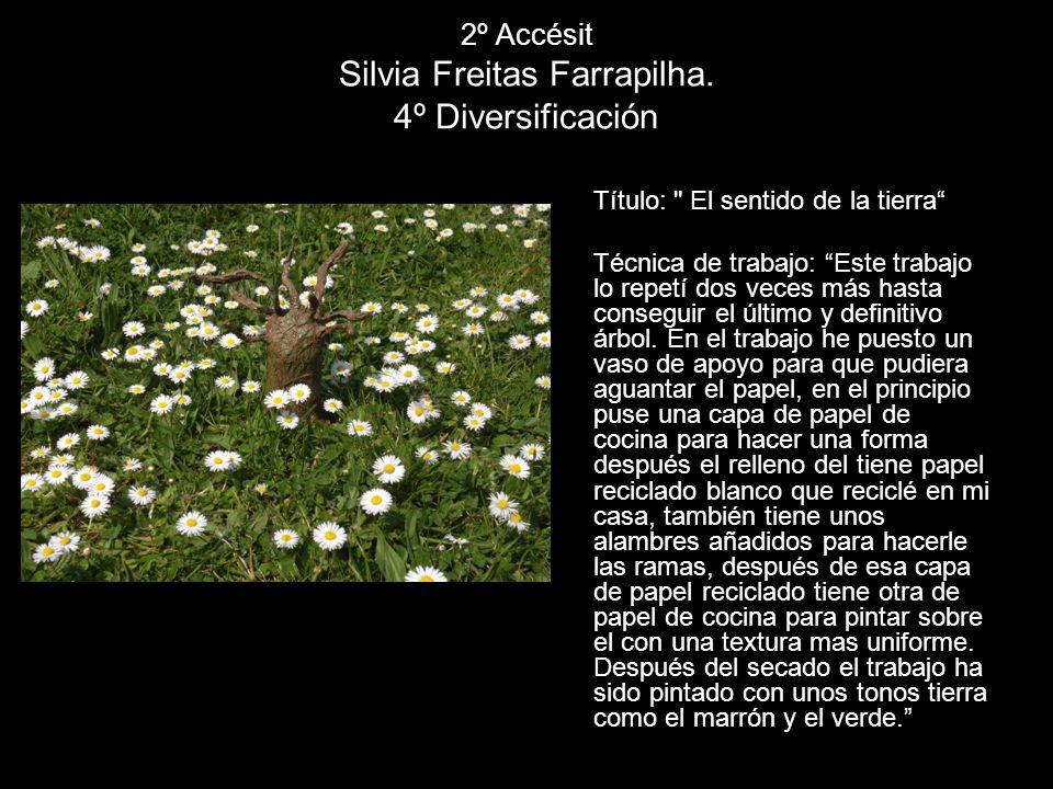 2º Accésit Silvia Freitas Farrapilha. 4º Diversificación Título: