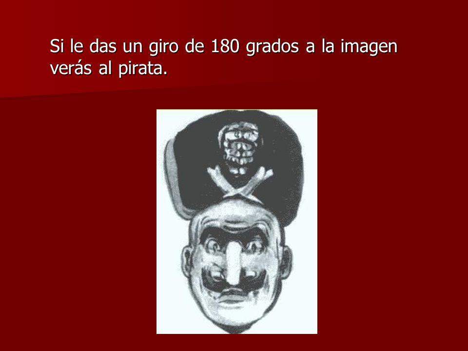 Si le das un giro de 180 grados a la imagen verás al pirata.