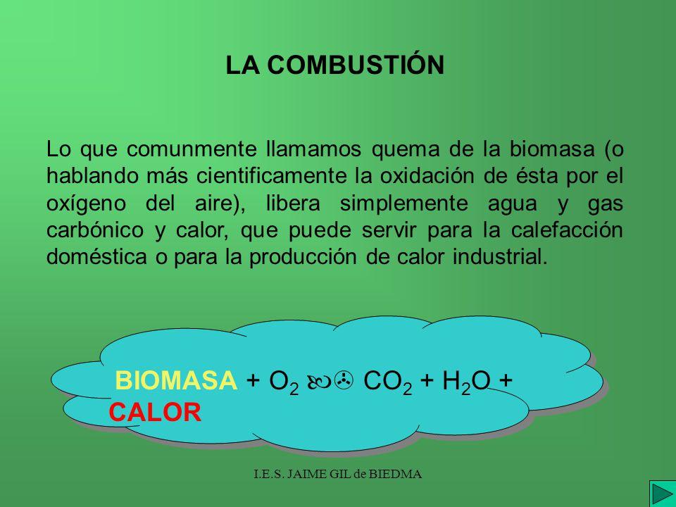 I.E.S. JAIME GIL de BIEDMA LA COMBUSTIÓN Lo que comunmente llamamos quema de la biomasa (o hablando más cientificamente la oxidación de ésta por el ox