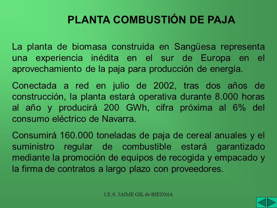 I.E.S. JAIME GIL de BIEDMA La planta de biomasa construida en Sangüesa representa una experiencia inédita en el sur de Europa en el aprovechamiento de