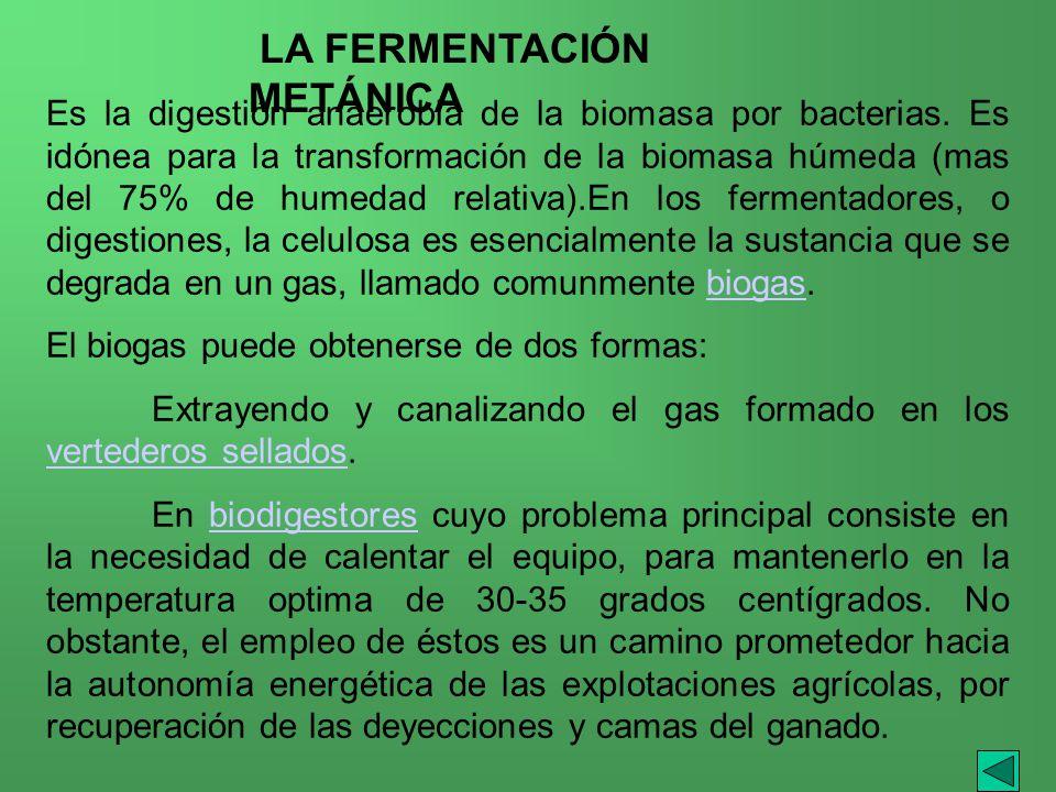 Es la digestión anaerobia de la biomasa por bacterias. Es idónea para la transformación de la biomasa húmeda (mas del 75% de humedad relativa).En los