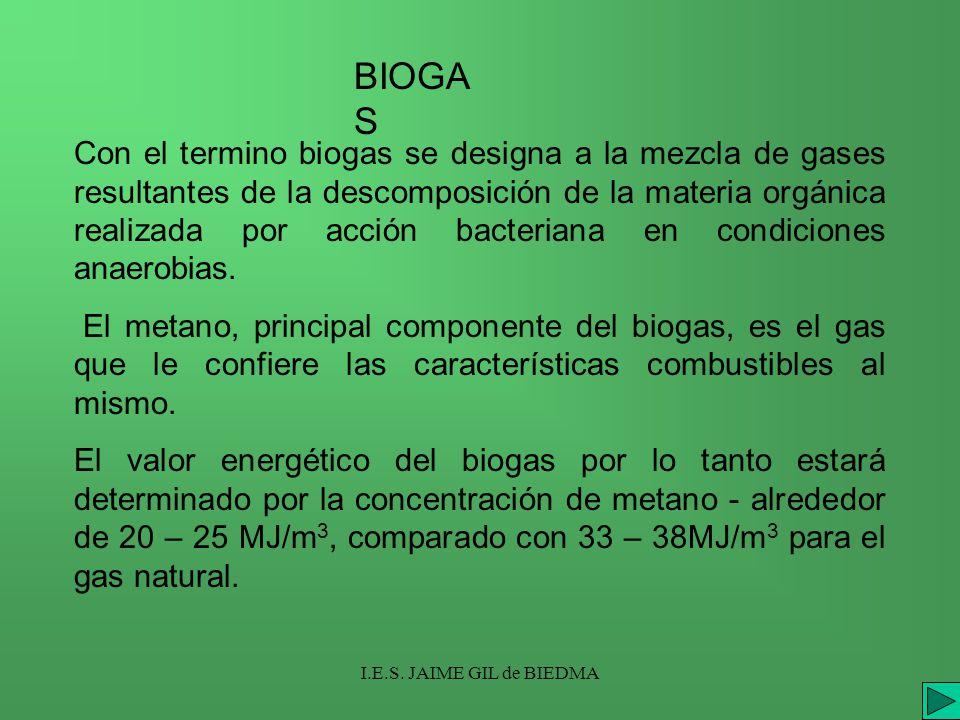 I.E.S. JAIME GIL de BIEDMA Con el termino biogas se designa a la mezcla de gases resultantes de la descomposición de la materia orgánica realizada por