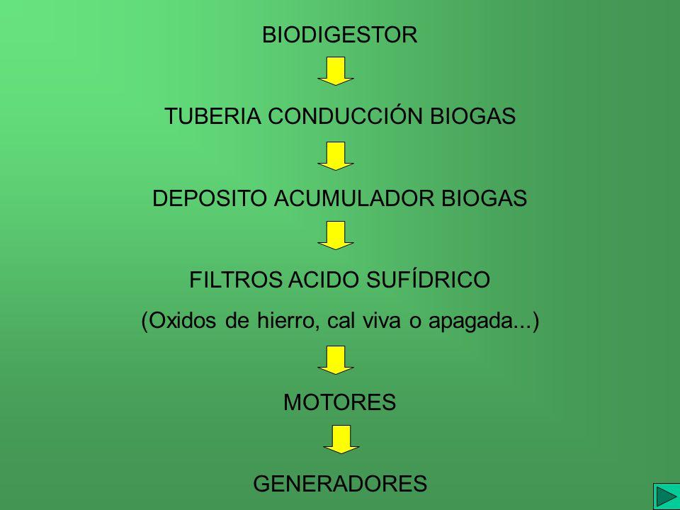 TUBERIA CONDUCCIÓN BIOGAS DEPOSITO ACUMULADOR BIOGAS FILTROS ACIDO SUFÍDRICO (Oxidos de hierro, cal viva o apagada...) MOTORES GENERADORES