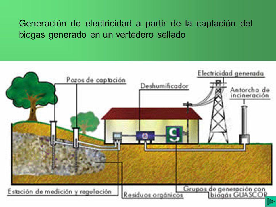 I.E.S. JAIME GIL de BIEDMA Generación de electricidad a partir de la captación del biogas generado en un vertedero sellado